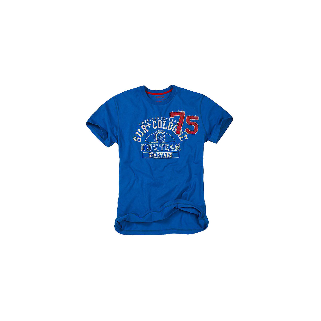 Surplus T-Shirt Spartans Tee blau 0