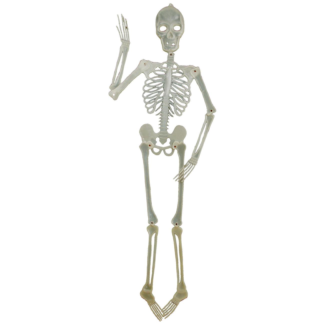 Halloween Deko Skelett 150 Cm Beweglich Fluoreszierend Kotte Zeller