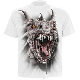 Spiral T-Shirt Dragon