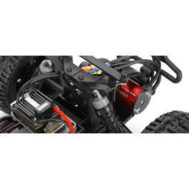 ECX 1:10 Ruckus 2WD Brushless Monster Truck AVC 2,4 GHz 100% RTR ECX03014i