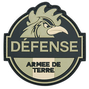 3D Rubber Patch Defense Armee de Terre grün